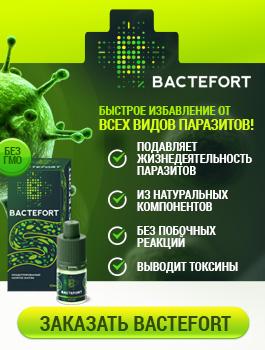 2016-05-06_bactefort_265h350