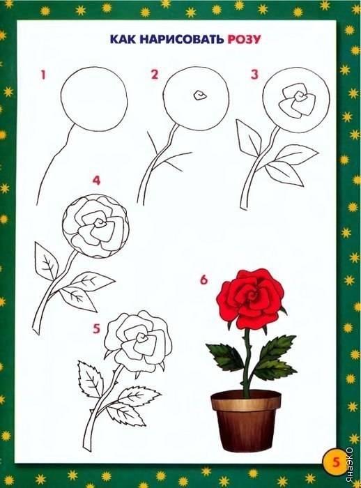 Как нарисовать цветы схемы
