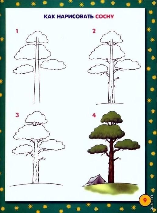 Нарисовать деревья пошаговая инструкция