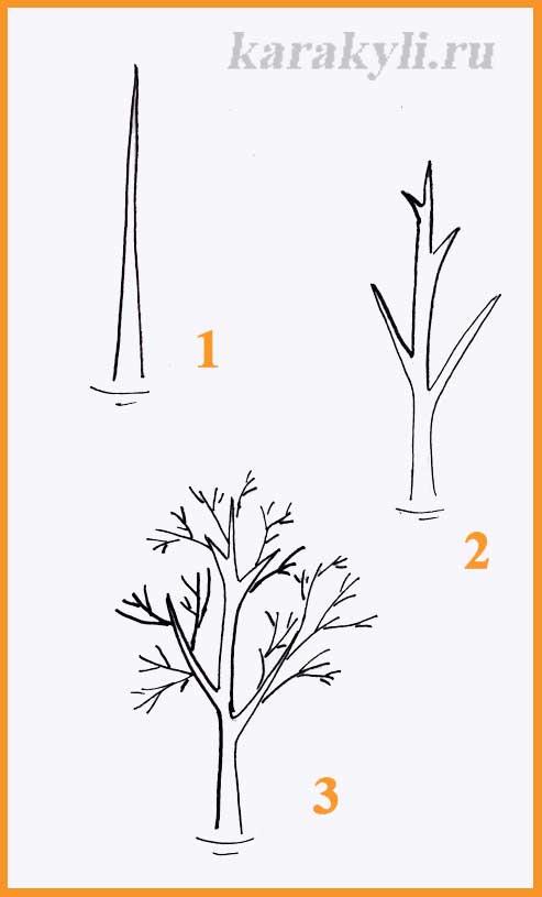 Нарисовать дерево карандашами поэтапно