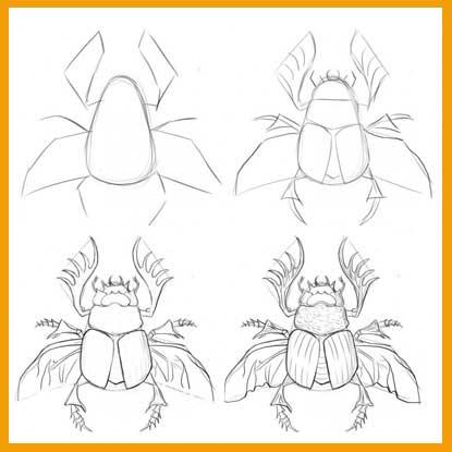 Как нарисовать насекомых карандашом поэтапно? - Полезная информация для